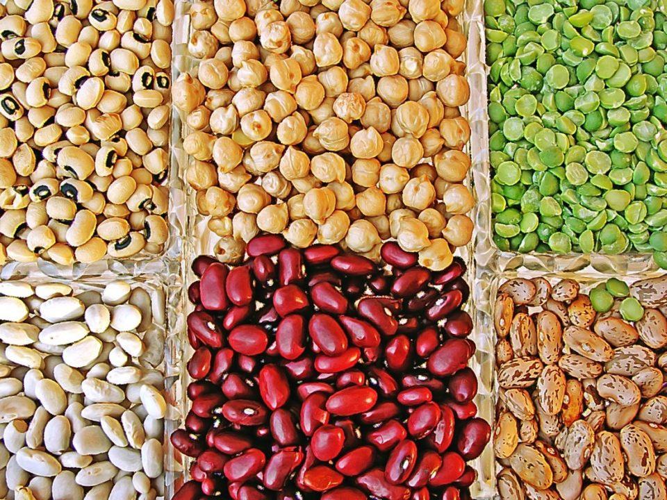 i 10 alimenti che si conservano più a lungo