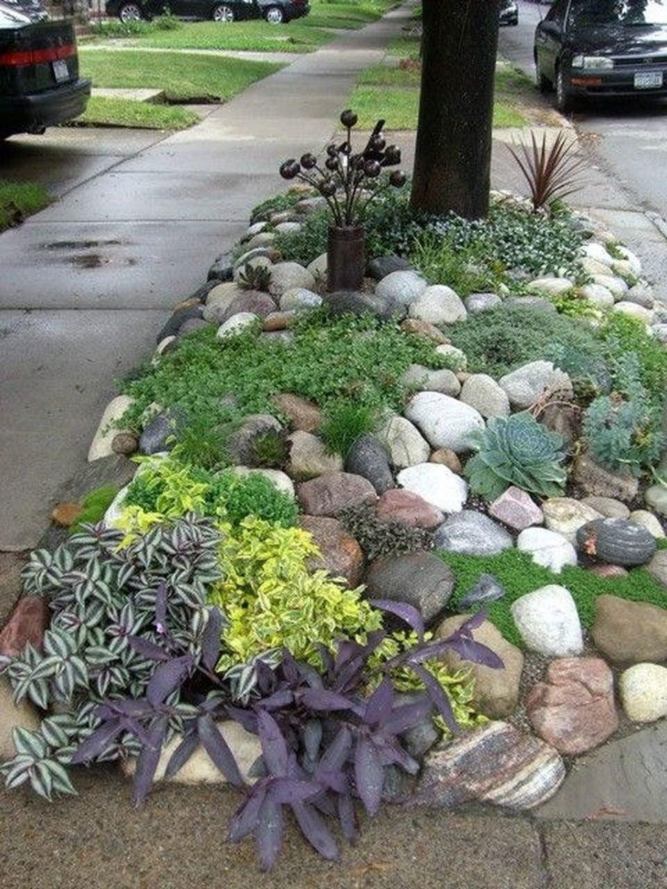 Fiori Da Giardino Roccioso giardini rocciosi fai da te, grandi e piccoli: idee tutte da