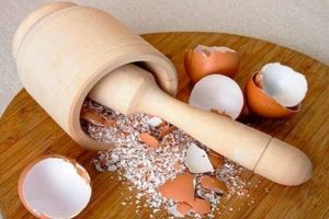 8 ragioni strane ma utilissime gusci uova