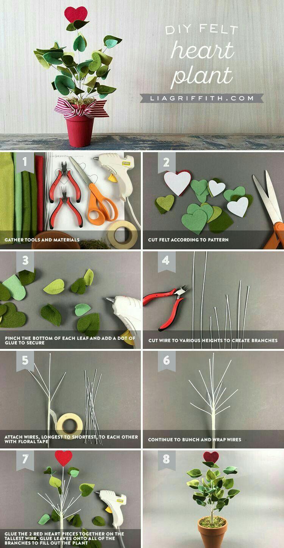 cactus e piante finte