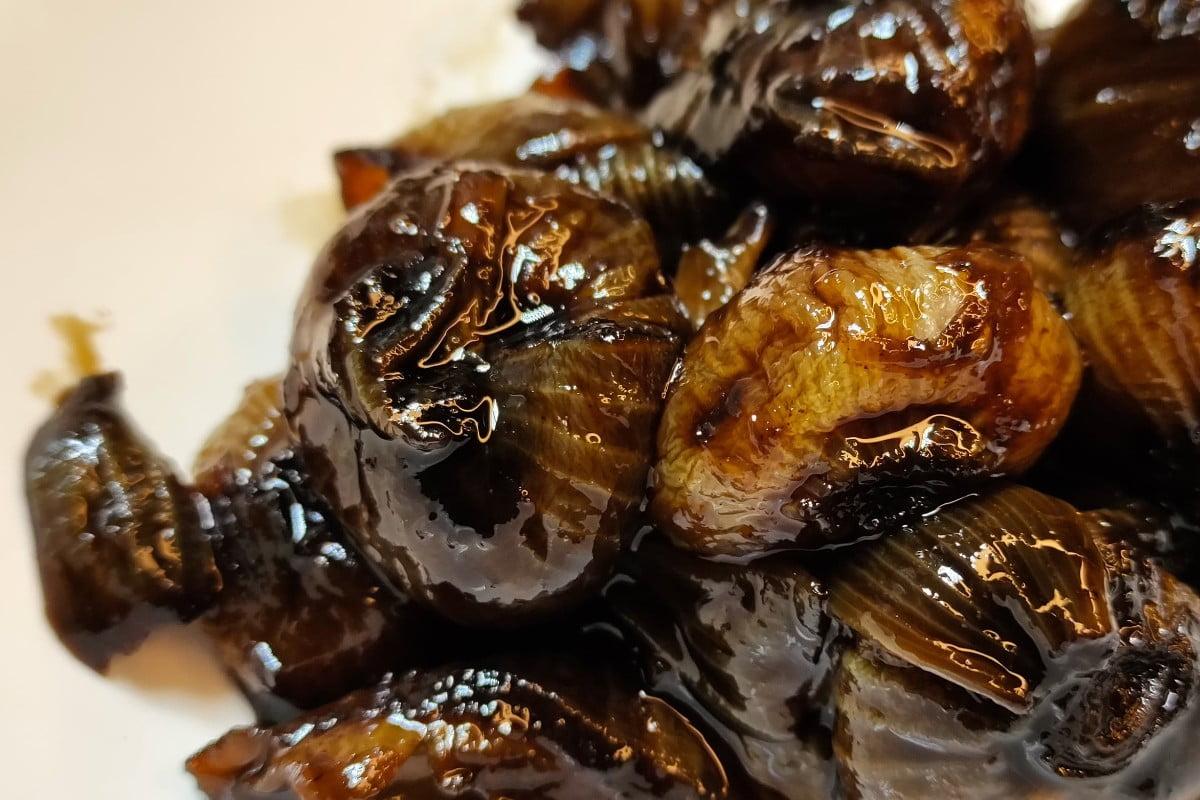 arista light meno calorica del cipolle allaceto balsamico