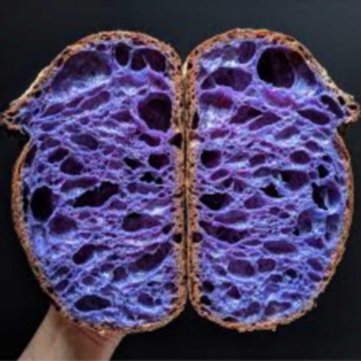il pane blu della salute