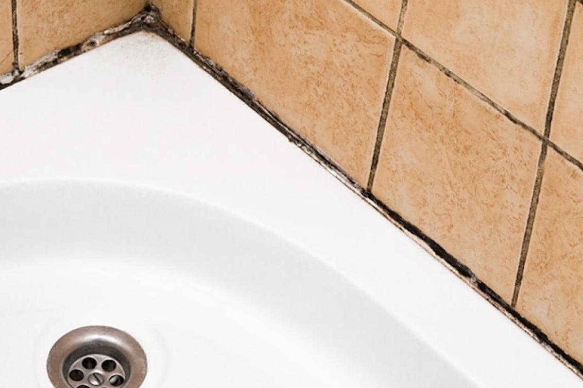 muffa dal silicone della doccia