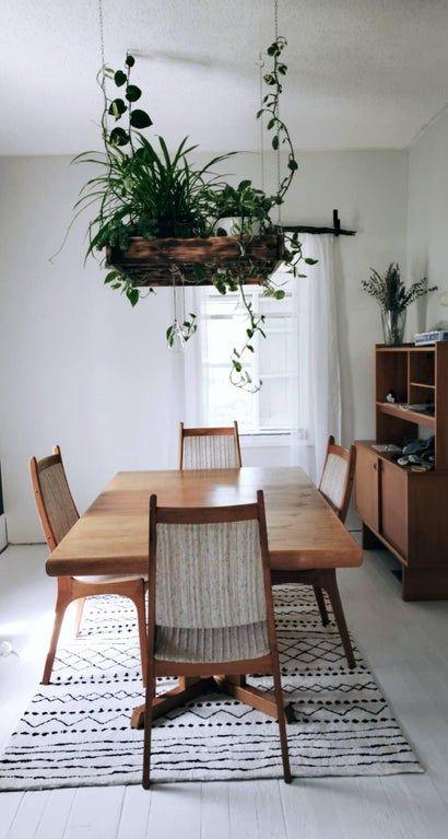 arredare casa con le piante 8