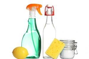 lacido citrico scopri i mille AdobeStock 232846802
