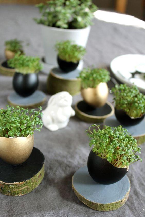 riutilizzare gusci delle uova per 1