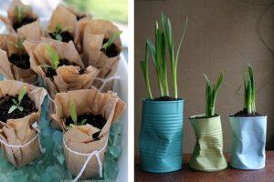 seminare le piantine con oggetti piantine contenitori di riciclo