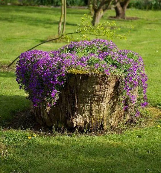 aiuole per il giardino ispirazioni 9