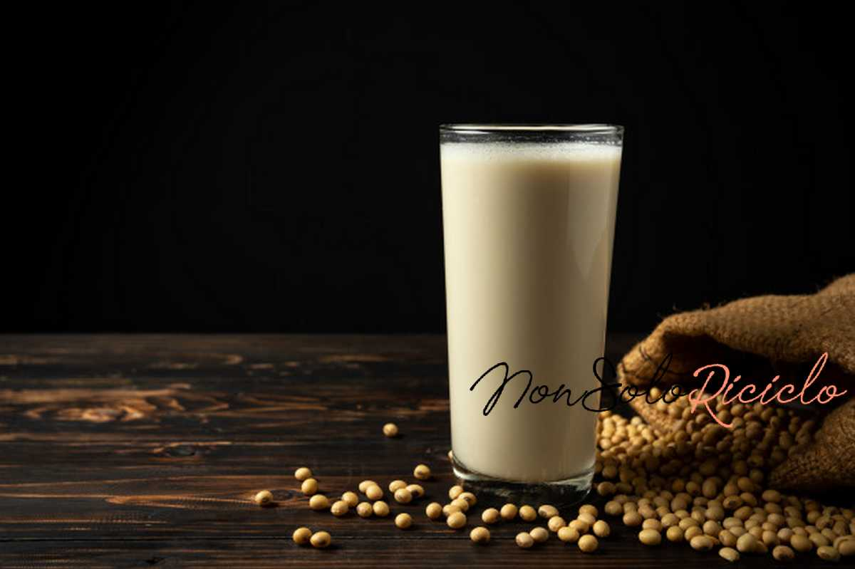 il latte vegetale facile da soy milk soy bean wooden table 1150 13413