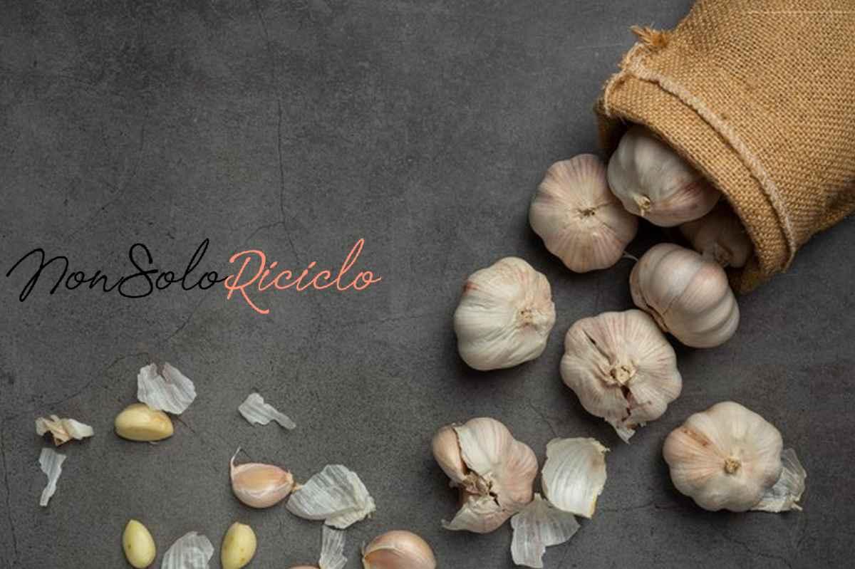 scopri 10 ottimi alimenti anti garlic paste black 1150 25539