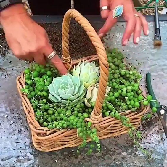 decorare giardino con riciclo creativo 8