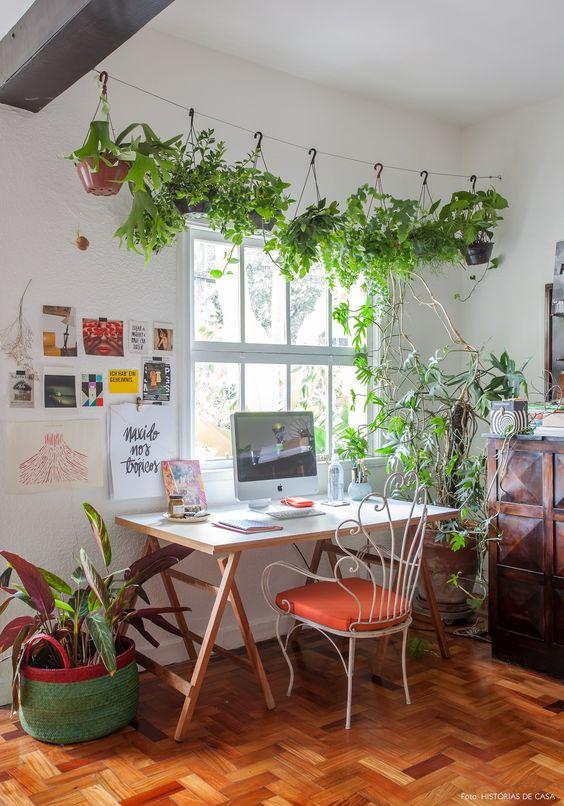 sistemare le piante in ufficio 1