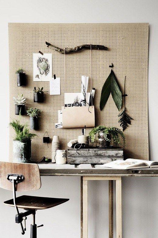 sistemare le piante in ufficio 5