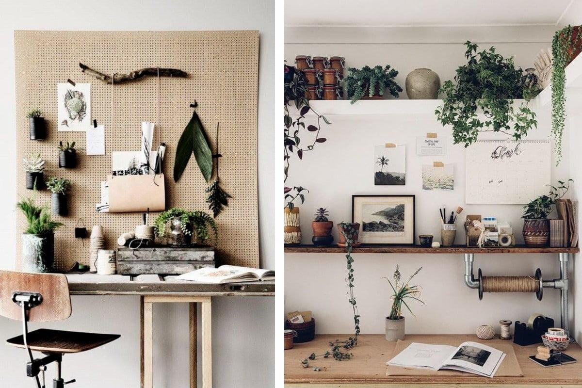 sistemare le piante in ufficio piante ufficio