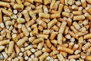 come riciclare cenere del pellet AdobeStock 215074949