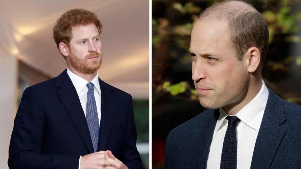 william e harry un importantissimo William e principe Harry re meteoweek.com