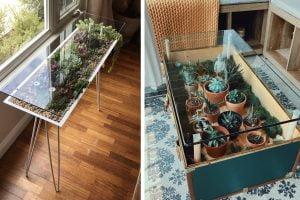 tavolino terrario fai da te tavolino terrario