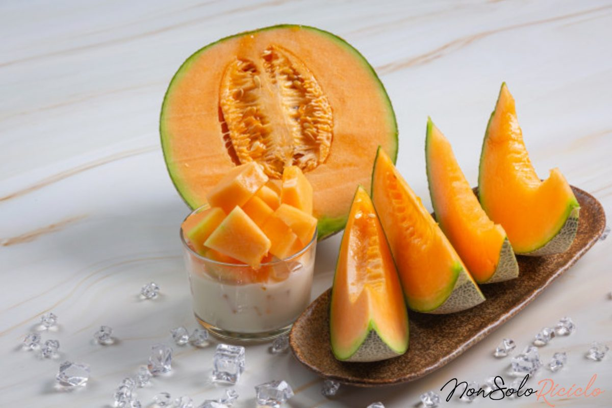 melone dolce e succoso il 4