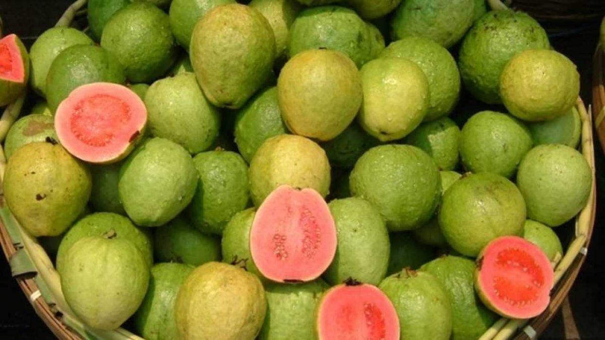 i 10 cibi piu ricchi guava 2 1280x720 1