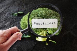 pesticidi nelle verdure a volte AdobeStock 161203839