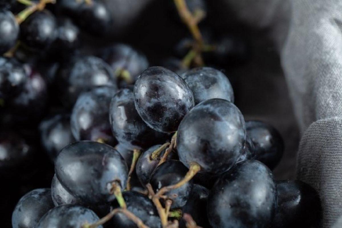 perche dovresti mangiare i semini close up view black grapes basket 114579 39088